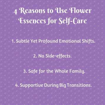 Why Take Flower Essences