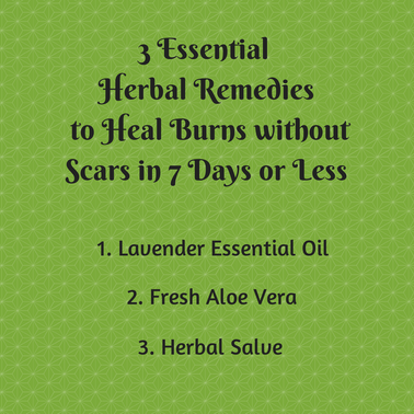 Heal Burns with Herbal Remedies